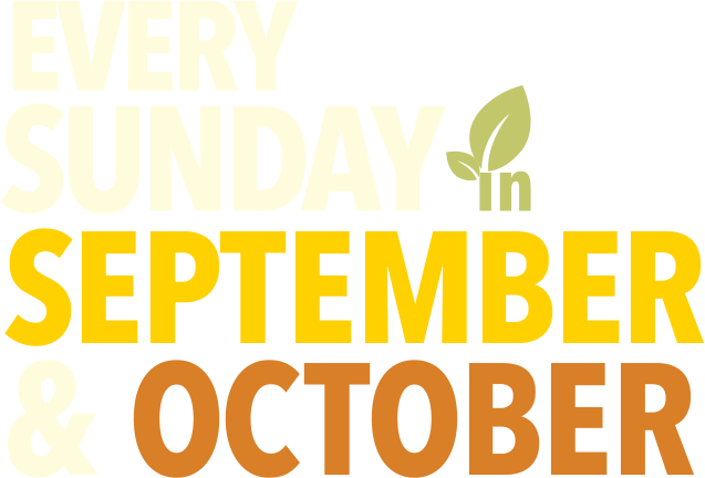 Every Sunday in September & October