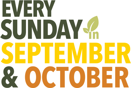Every Sunday in September and October