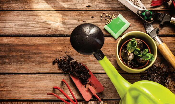 Summer gardening tools on table