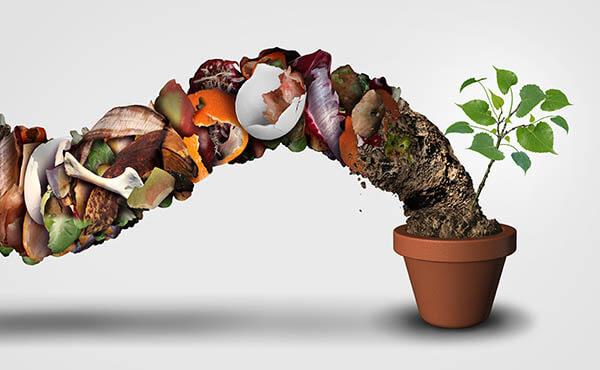 International Compost Awareness Week: Appreciating the Benefits of Composting